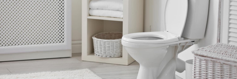 Toilet Bloomington IL